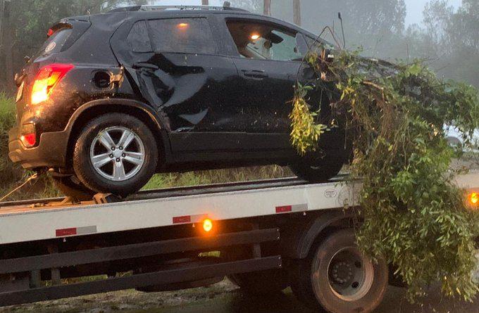 Acidente envolvendo um carro e uma árvore na Estrada Costa Gama