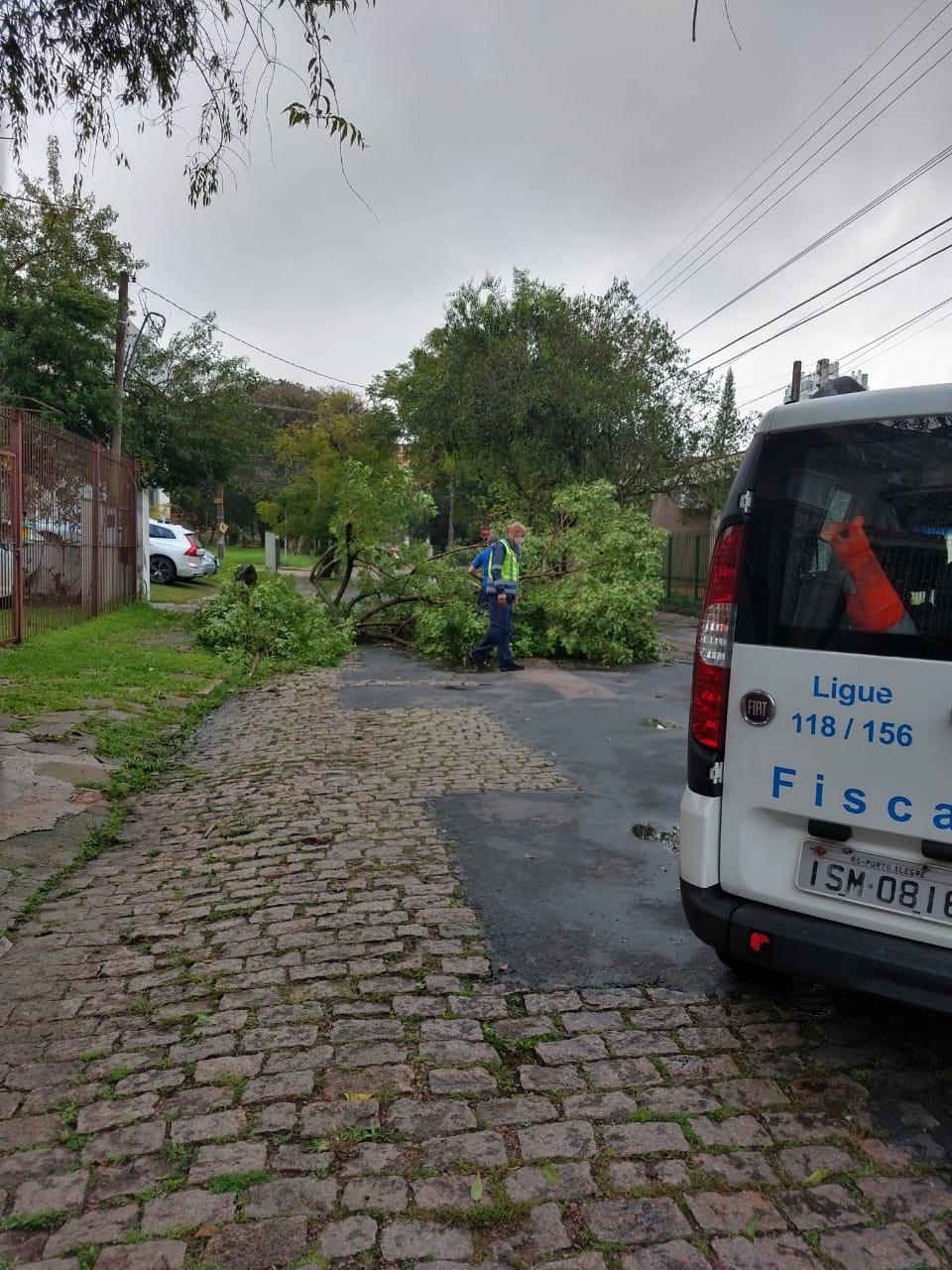 Quedas de árvores Porto Alegre