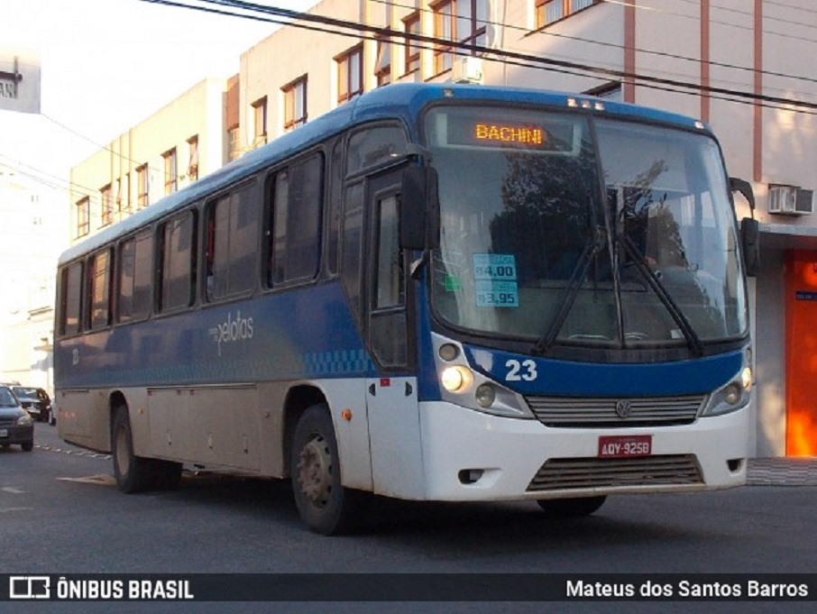 Bachini Pelotas